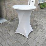 Mooie statafelrok lichtgrijs Leiden